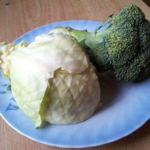 Hvordan få barn til å spise grønnsaker?