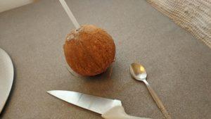 drikk kokosmelk